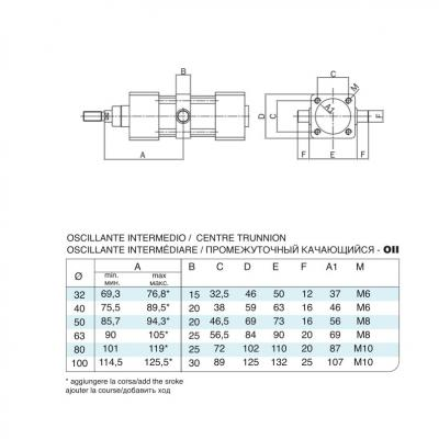 Centre trunnion stainless steel cylinders 15552 stainless steel Bore 80