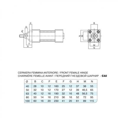 Cerniera femmina anteriore/posteriore inox per cilindro 15552 inox Alesaggio 40