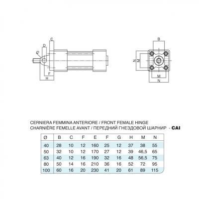 Cerniera femmina anteriore/posteriore inox per cilindro 15552 inox Alesaggio 50