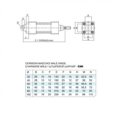 Male hinge stainless steel cylinders 15552 stainless steel Bore 100