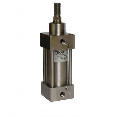 Cilindro inox ISO15552 doppio eff. ammort. magn. Alesaggio 100 Corsa 500